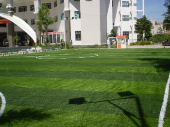 Kĩ thuật thi công sân cỏ nhân tạo