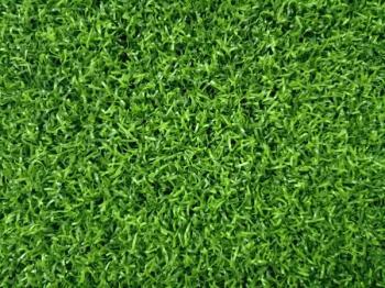 Ưu điểm của cỏ nhân tạo sân golf HS610