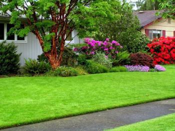 Tại sao cỏ nhân tạo sân vườn được ưa chuộng nhất hiện nay?